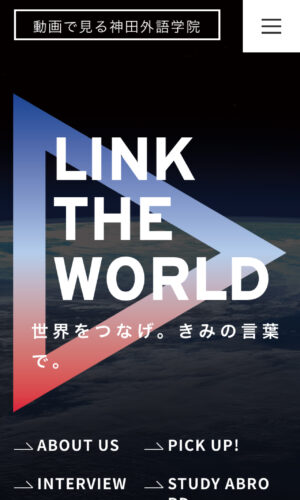 LINK THE WORLD